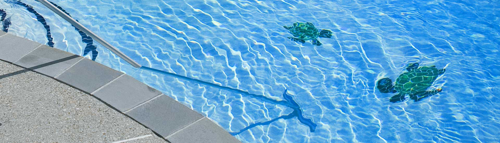 elata-swimming-pool-service-pool-maintenance